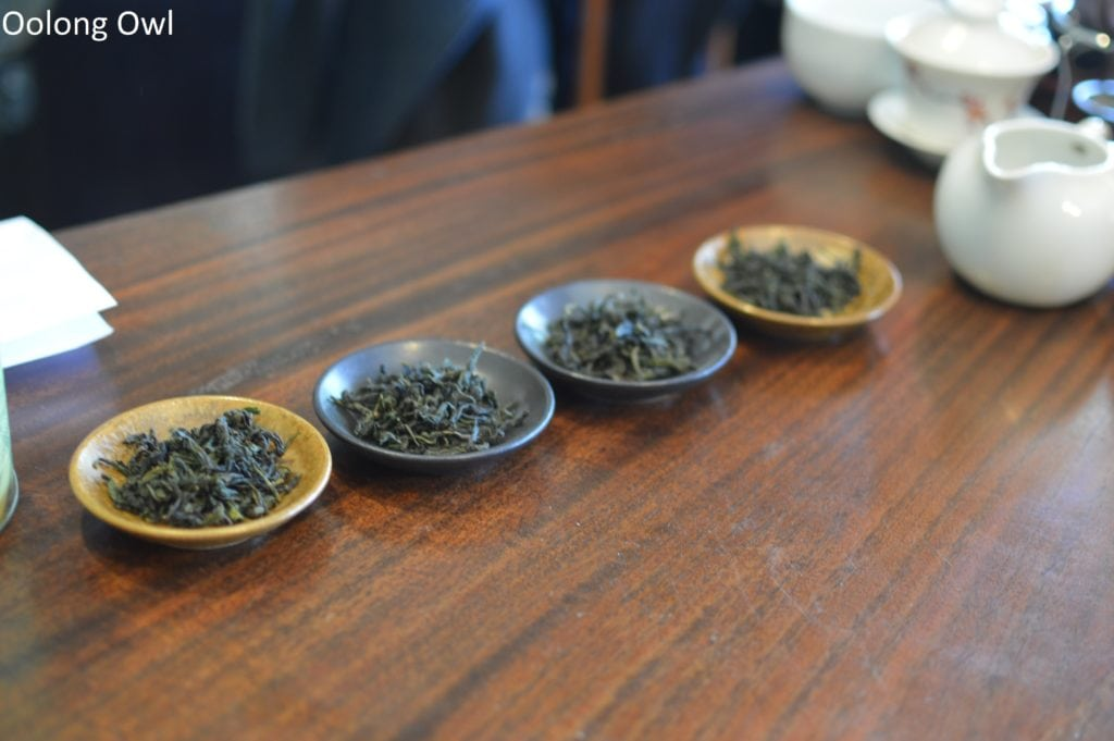 floating leaves blind tasting oolongs - oolong owl (1)