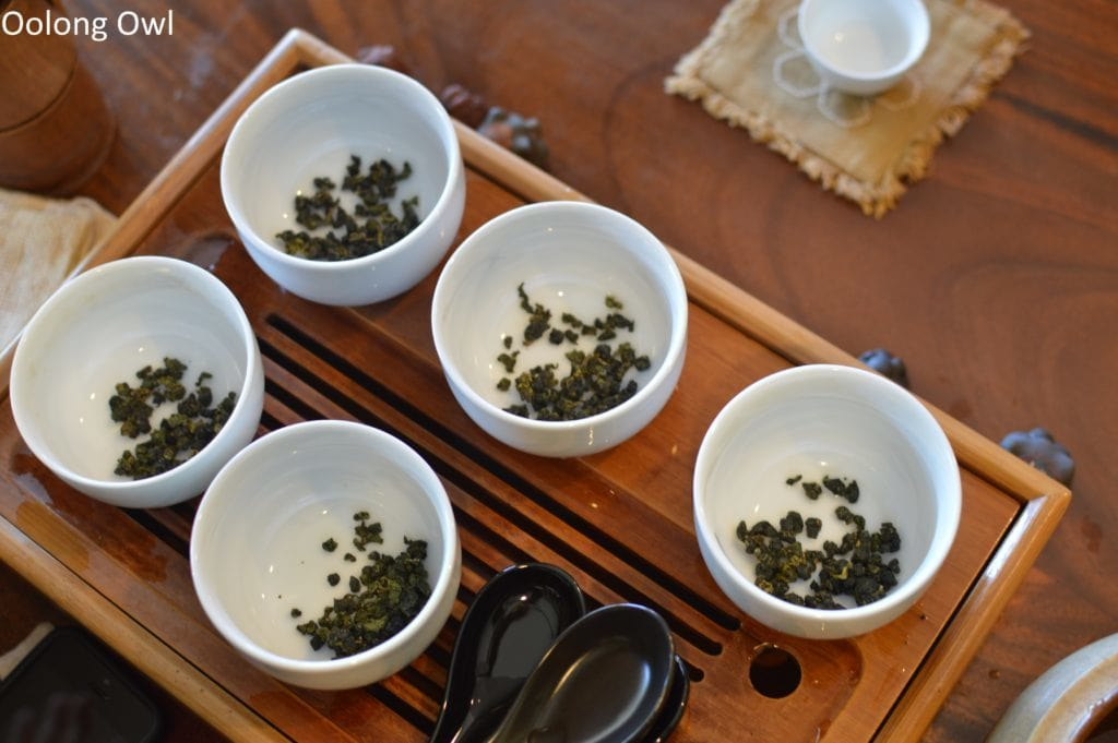 floating leaves blind tasting oolongs - oolong owl (4)