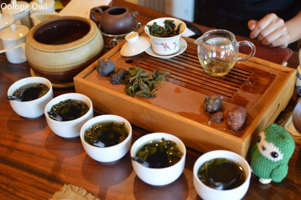 floating leaves blind tasting oolongs - oolong owl (5)