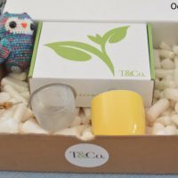 tandco june - oolong owl (1)