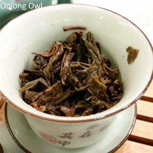 Laos Tea 2012 Sheng - oolong Owl (7)