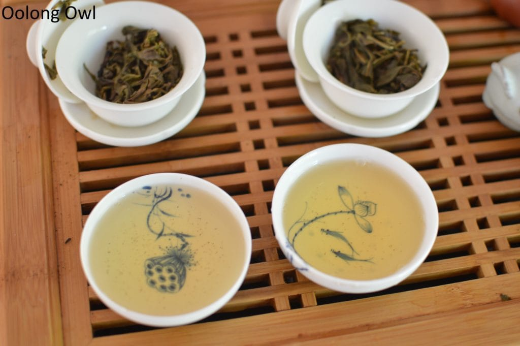 august 2016 white2tea club mengsong - oolong owl (11)
