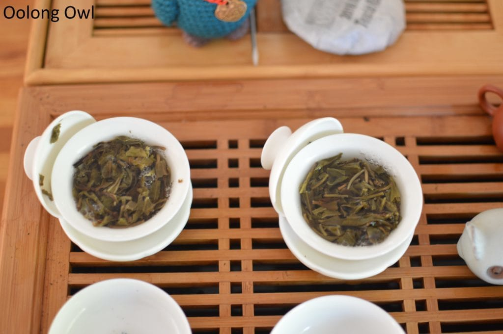 august 2016 white2tea club mengsong - oolong owl (12)