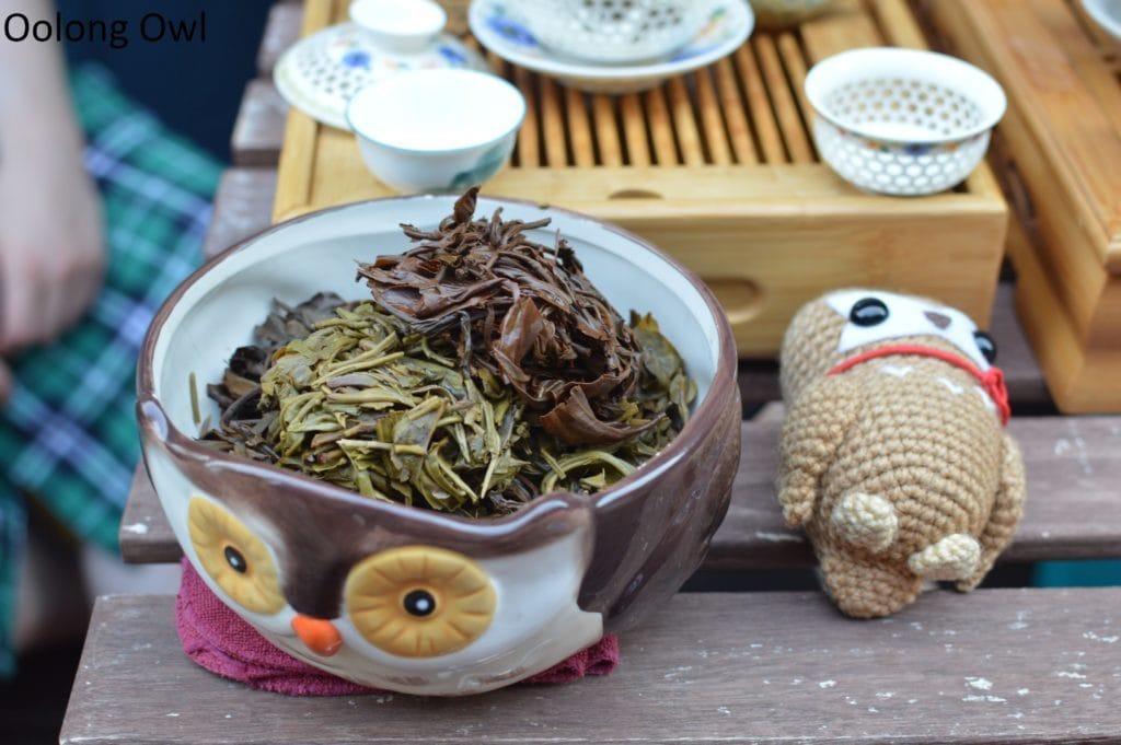 sunday tea hoots 24 (4)