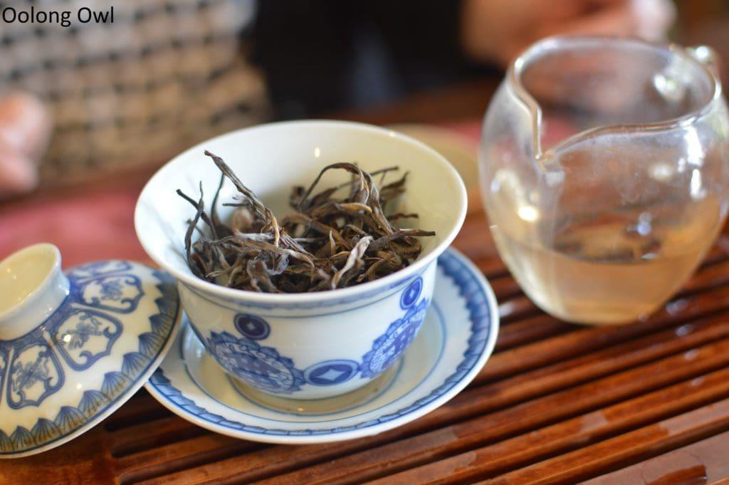 sunday-tea-hoot-26-5