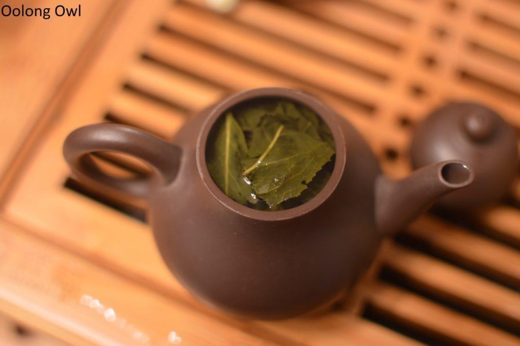 artist-lin-oolong-stone-leaf-teahouse-oolong-owl-7