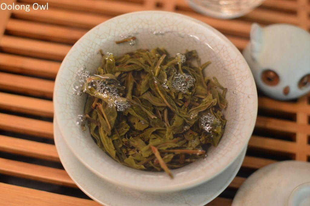 2016-spring-mengku-bitterleaf-tea-oolong-owl-5