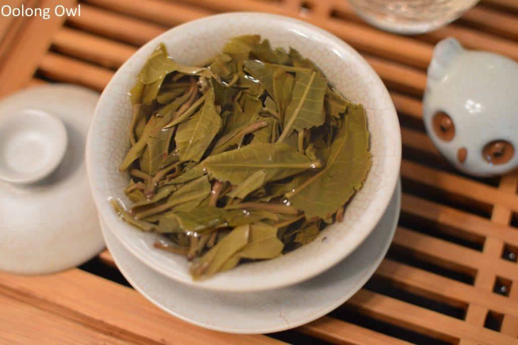 2016-spring-mengku-bitterleaf-tea-oolong-owl-7