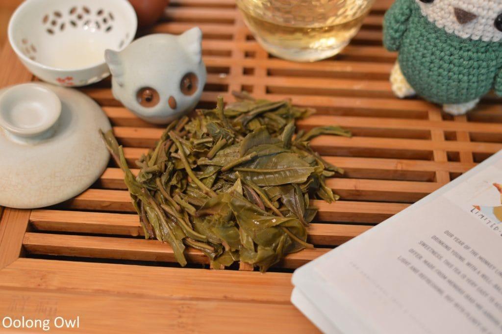 2016-spring-mengku-bitterleaf-tea-oolong-owl-8
