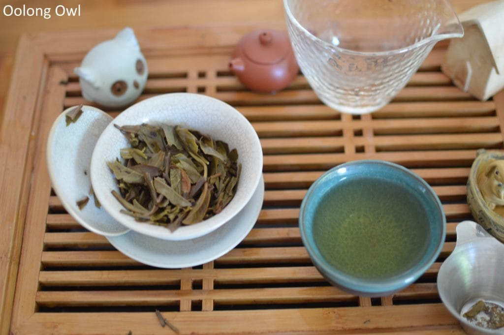 2016-teadontlie-white2tea-oolong-owl-6