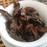 hsinchu-oriental-beauty-adagio-teas-oolong-owl-7