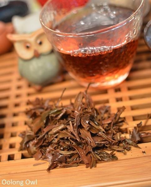 Nepal tea white prakash shangrila oolong - oolong owl (10)