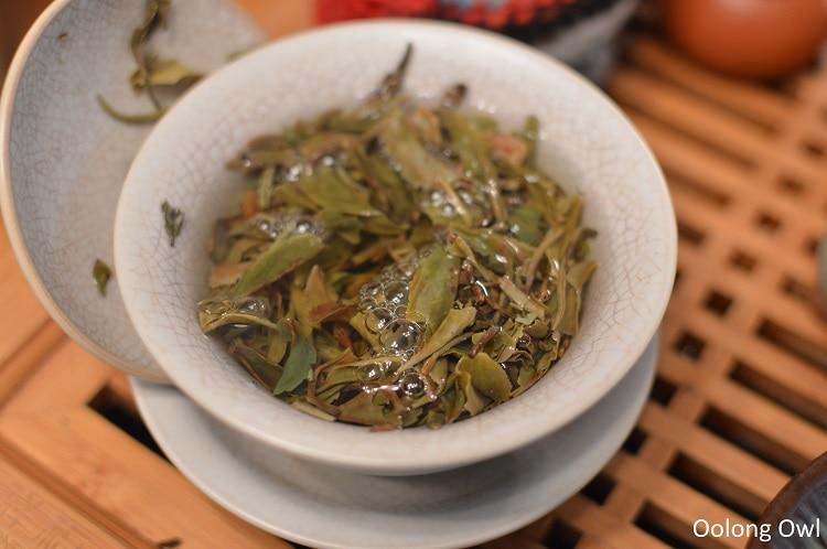 Nepal tea white prakash shangrila oolong - oolong owl (4)