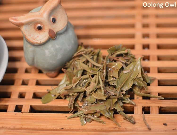 Nepal tea white prakash shangrila oolong - oolong owl (5)
