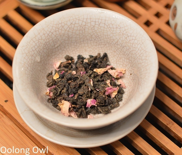will it gongfu oolong - oolong owl (5)