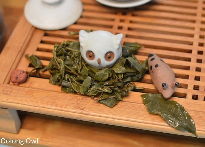 tillerman tea winter oolong - oolong owl (8)
