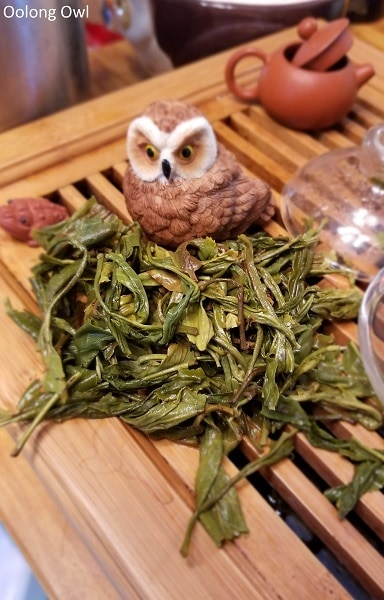 may2017 w2t club - oolong owl (7)