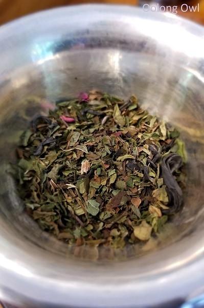 purple leaf tea justea - oolong owl (6)