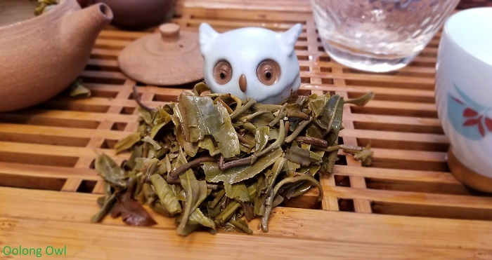 2017 big green hype - white2tea- oolong owl (12)