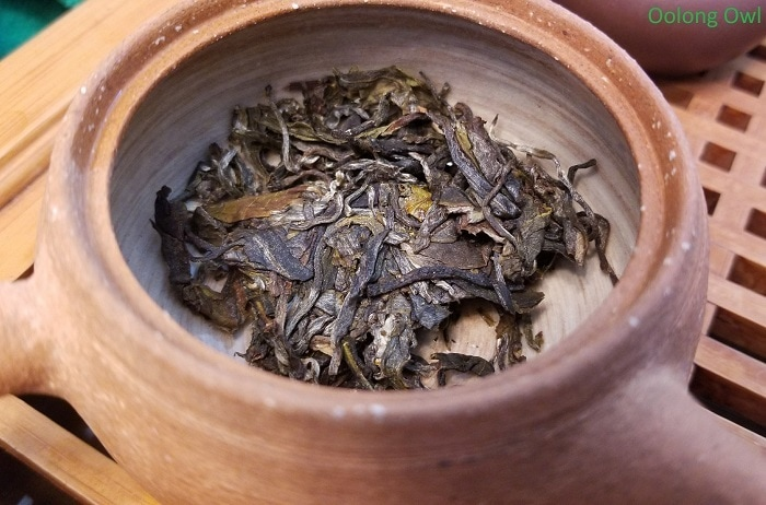 2017 big green hype - white2tea- oolong owl (6)