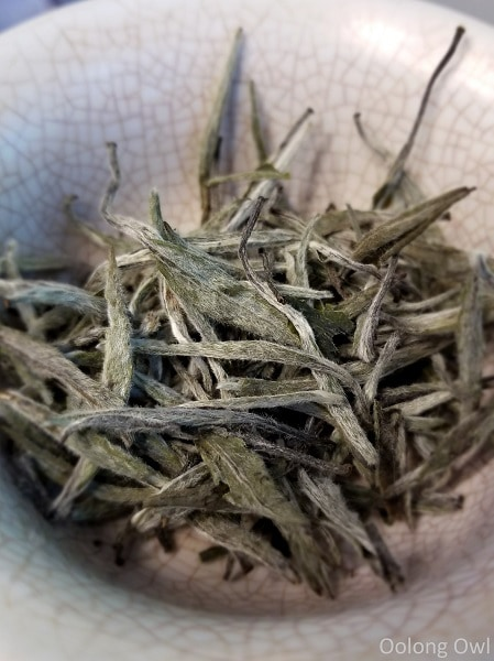 2017 spring silver needle floating leaves tea - oolong owl (2)