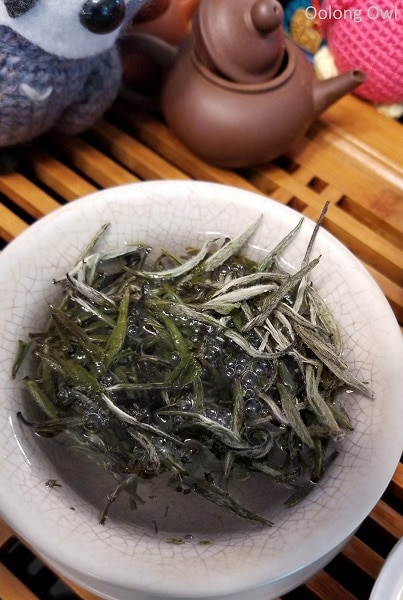 2017 spring silver needle floating leaves tea - oolong owl (3)