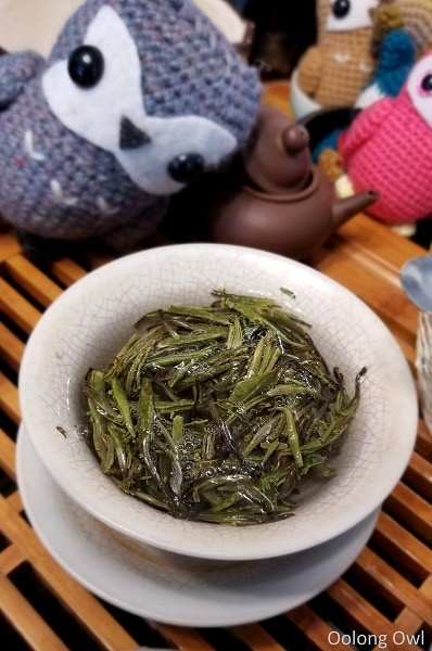 2017 spring silver needle floating leaves tea - oolong owl (4)