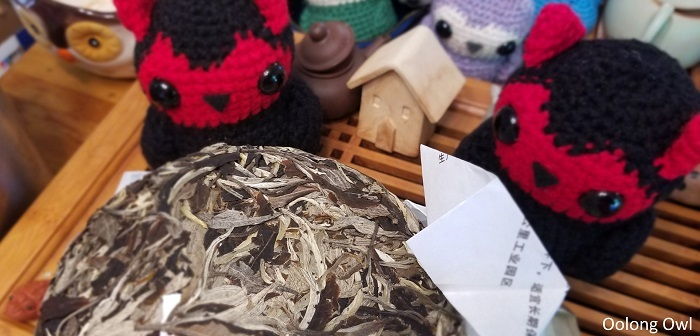 white2tea nightlife - oolong owl (3)