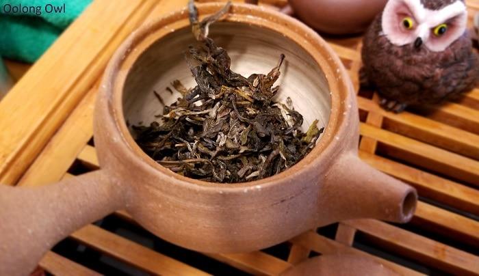 2016 wuliangh - essence of tea - oolong owl (5)