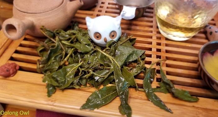 2017 spring chingjin gaoshan tillerman teas - oolong owl (10)