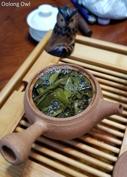 2017 teabook raw puer - oolong owl (9)