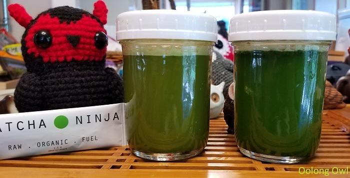 Matcha Ninja - oolong owl (6)